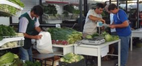 Mercado Concentrador-Ofertas