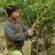 trabajo infantil-tarefear