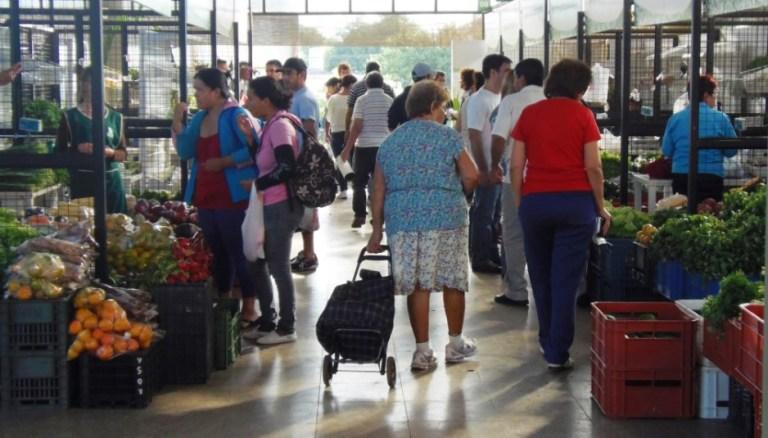 Ofertas-Mercado-Concentrador.