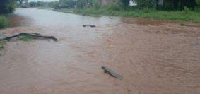 inundacion-calles-candelaria