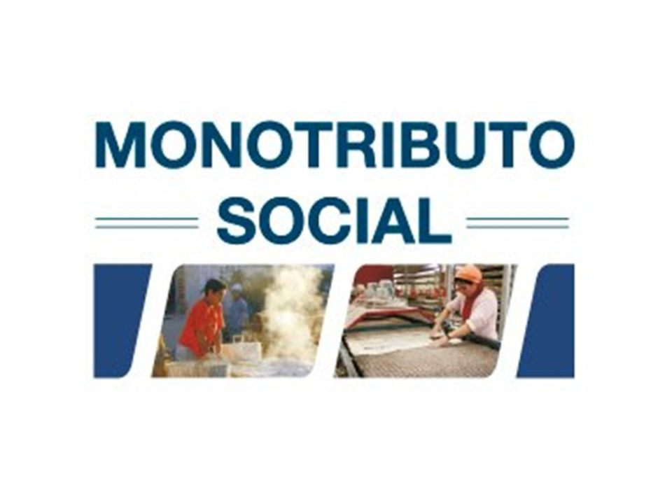monotributo social