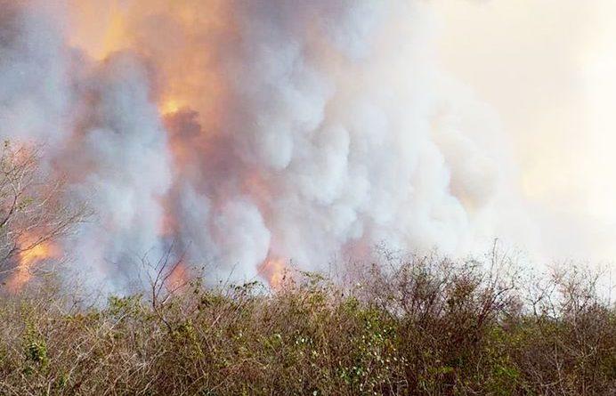 incendios Paraguay1