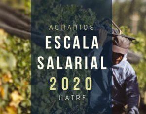 Escala Salarial 2020