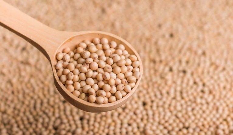 soja y aceite de soja a la Argentina