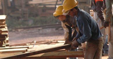 Lanzan créditos para pequeños secaderos de madera
